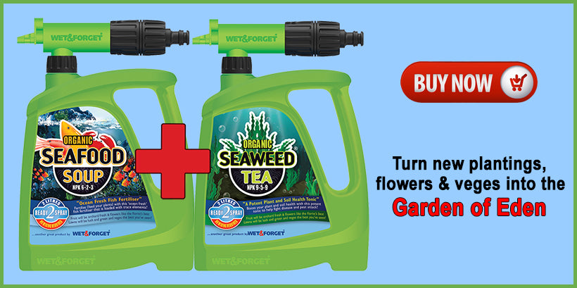 Help your garden grow with these 2 amazing products