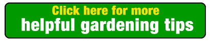 Helpful Gardening Tips For Better Gardening