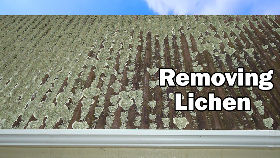 Some Tips for when you Remove Lichen off Your Roof