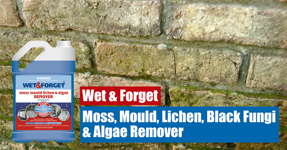 Wet & Forget is the Original moss Mould & Lichen remover