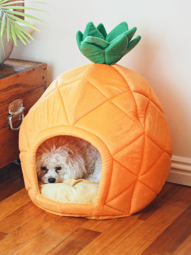 Pineapple Express Cave Dog Bed