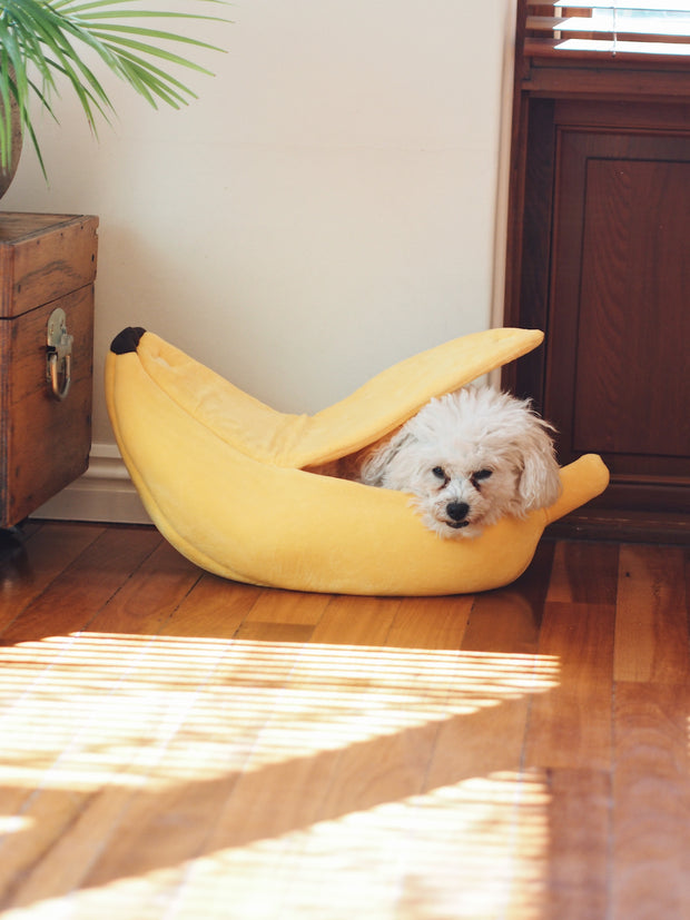Banana Split Dog Bed