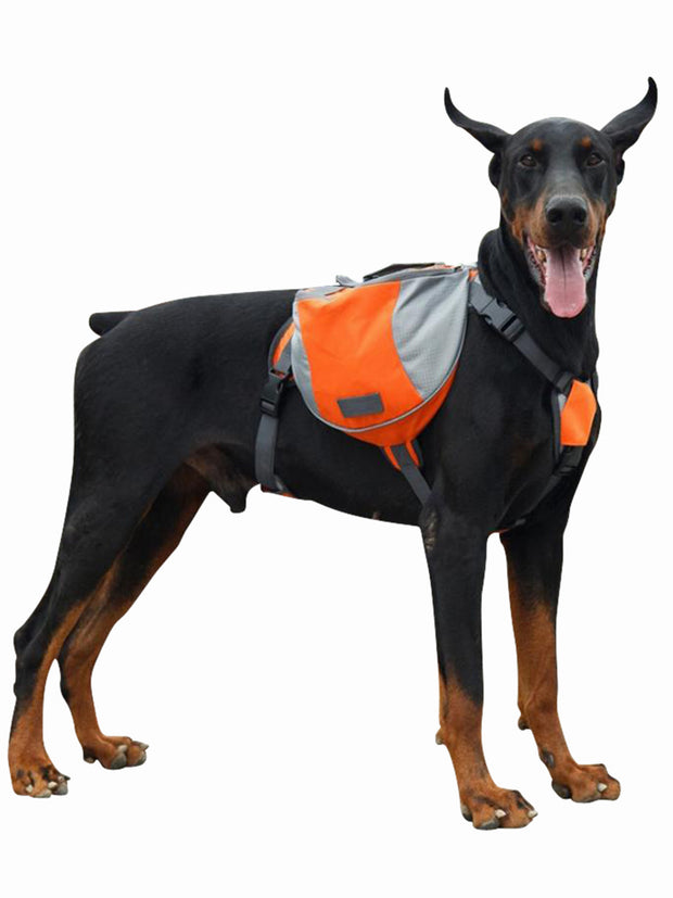 Tailup K9 Carrier Pack Harness