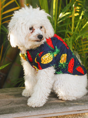 Feelin' Fruity Dog Shirt