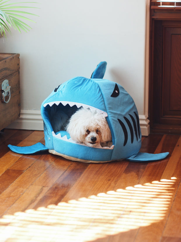 Shark Chomp! Cave Dog Bed