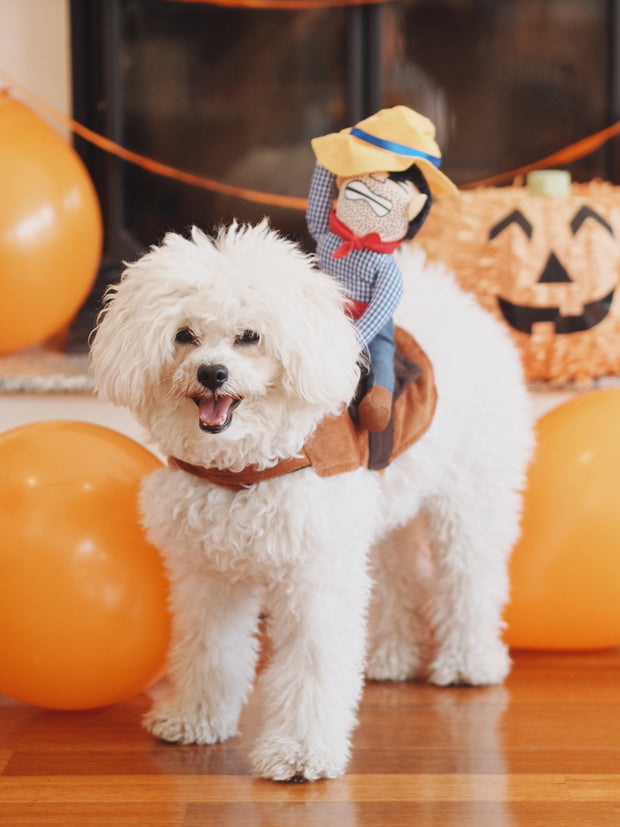 Ride 'Em Cowboy Dog Costume