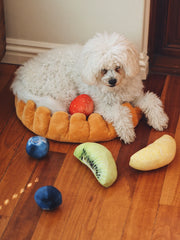 Fruit Tart Dog Bed