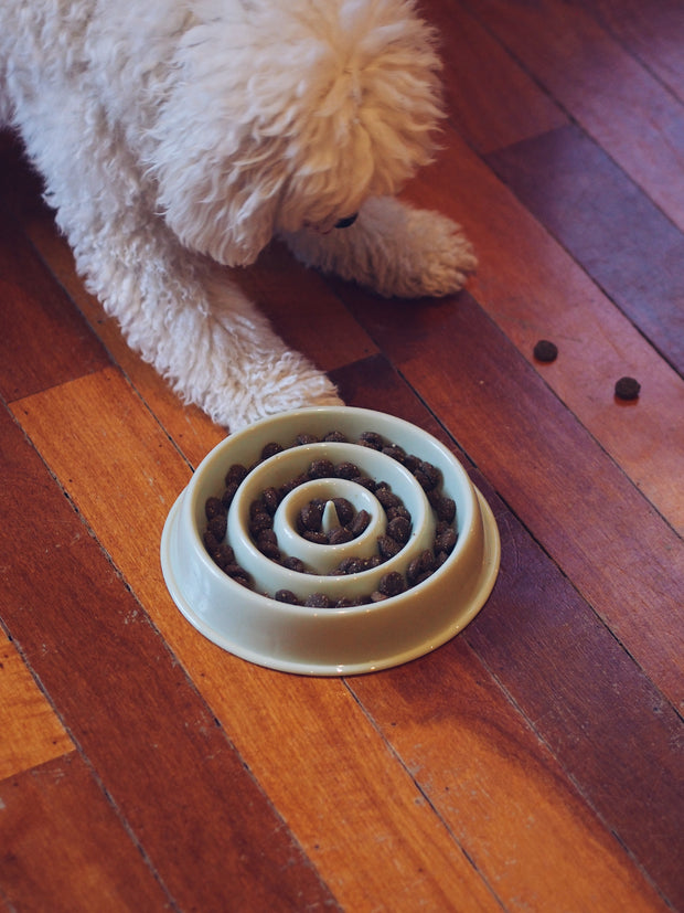 Ripple Slow-Eater Dog Bowl