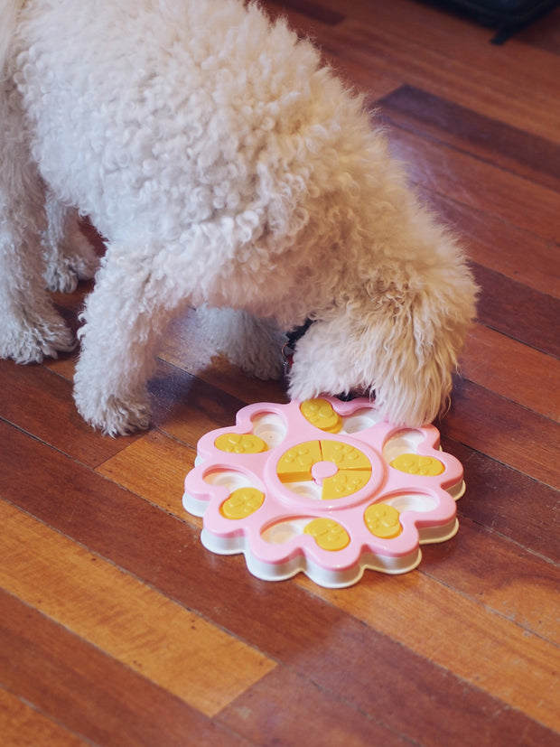 Flower Power Dog Food Puzzle