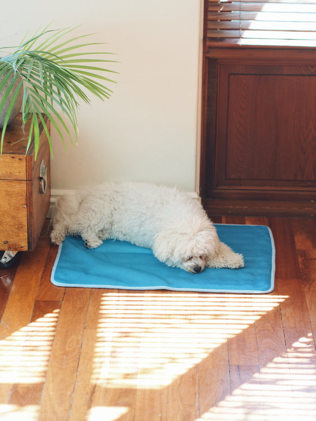 Summer Cooling Dog Bed