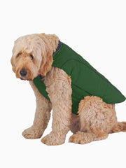 Warm quilted dog jacket with padding for winter