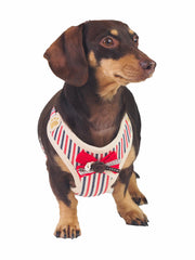 Cute Dog Bow Tie Harness and Lead Set