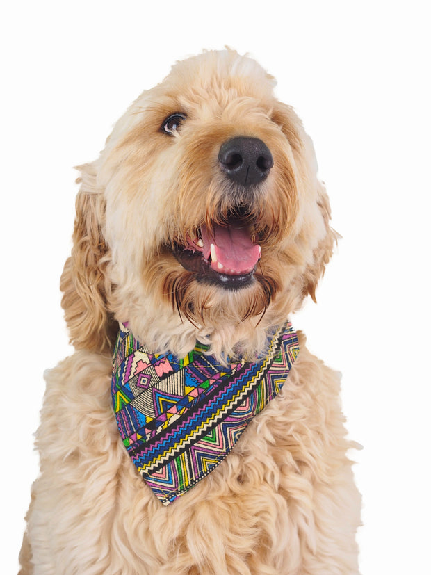 Adjustable aztec pattern dog bandana