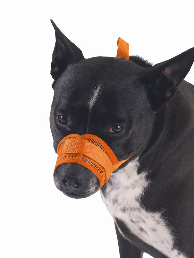 Breathable nylon mesh dog muzzle