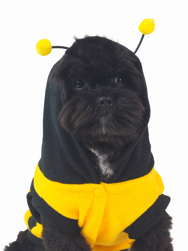 Affordable bumble bee halloween dog costume
