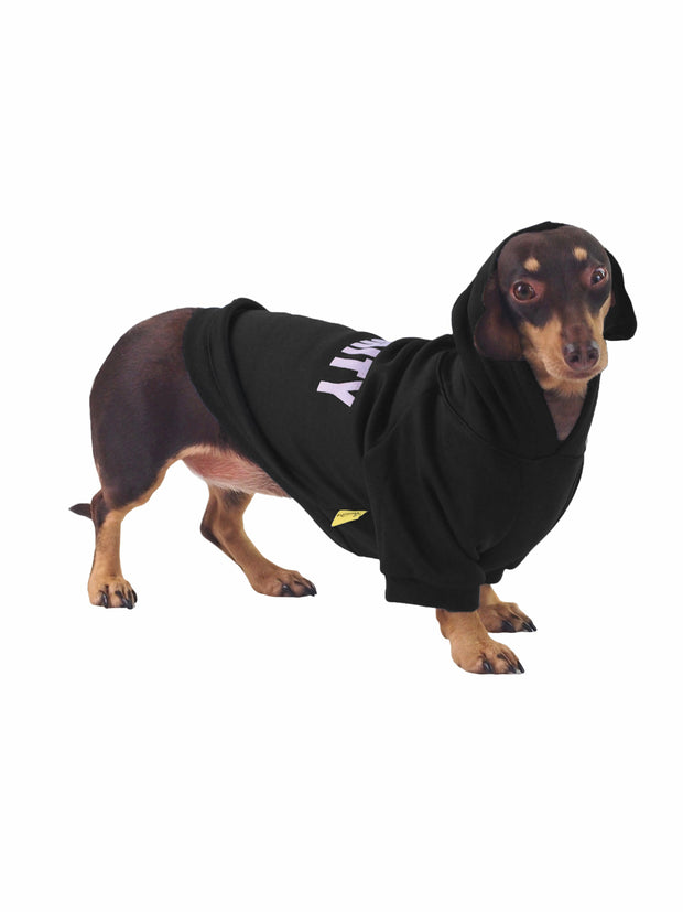 Best online dog apparel and jumpers