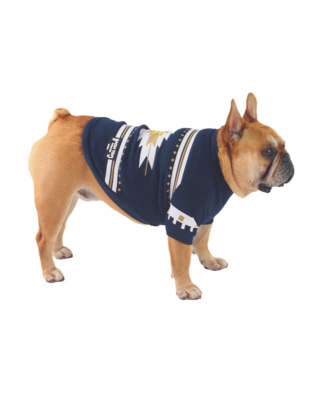 Aztec Valley Fashionable Dog Sweater