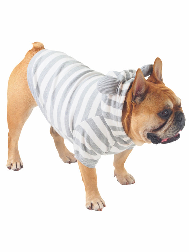 Fancy Goodboy Striped Dog Hoodie