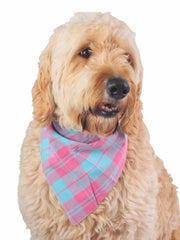 Adjustable plaid dog bandana in pink and light green
