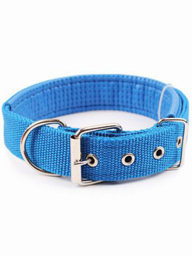 Blue Strong Dog Collar