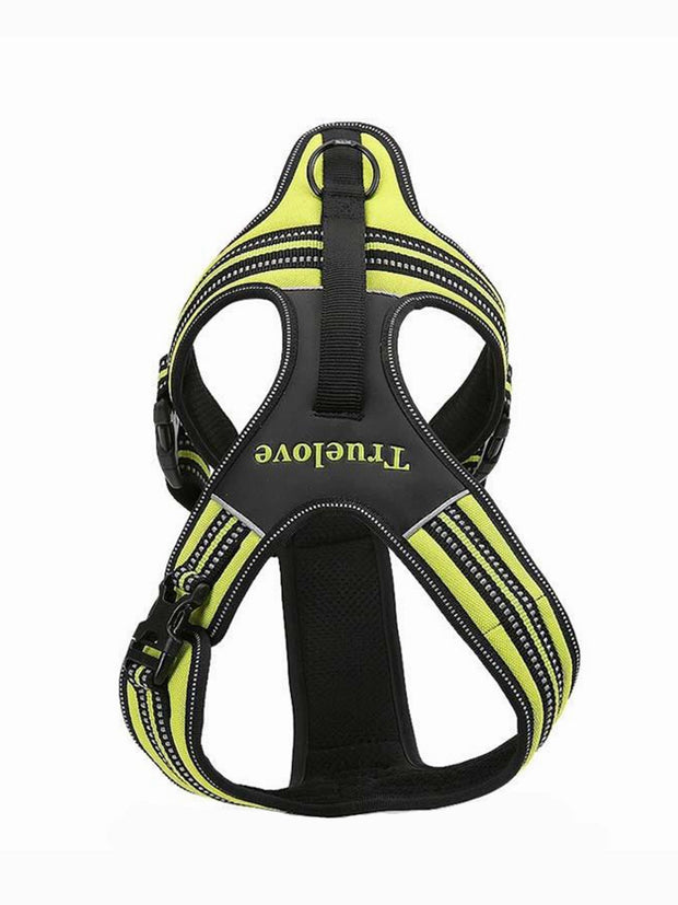 Afterpay dog harness