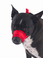 Anti-Bark Dog Muzzle in red
