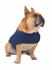 Dog Anxiety treatment thundershirt