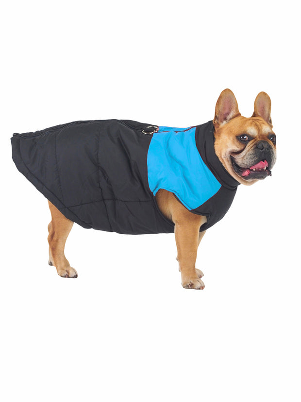 Waterproof padded winter dog jacket and coat