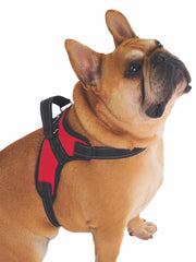 Adjustable dog harness with grab handle and lead hook