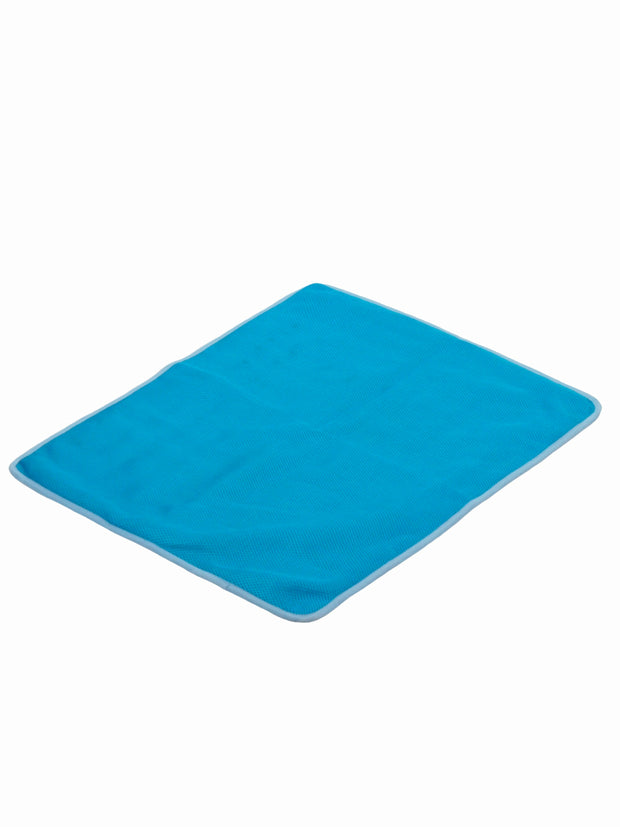 Blue mat for dogs that absorbs heat