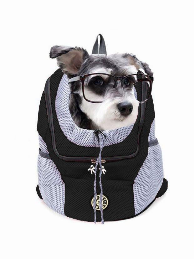 black dog backpack