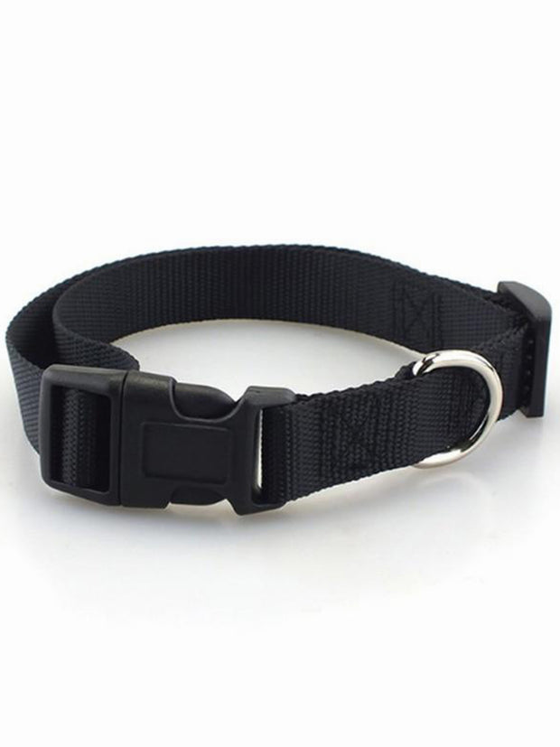 black nylon dog collar