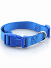 blue quick release dog collar