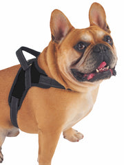 Strong Breathable Mesh Dog Harness in black