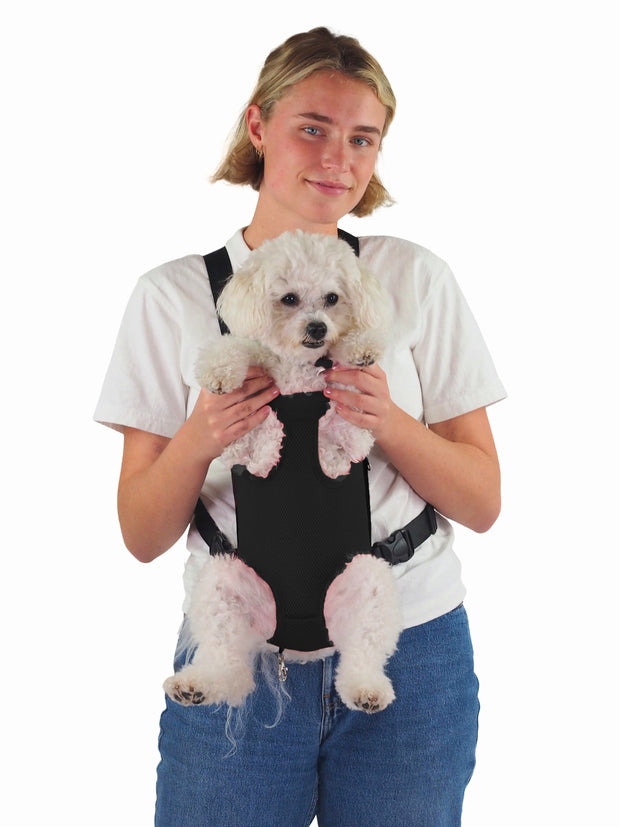 Affordable online dog travel and carry bags