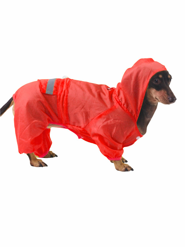 Dog rainjacket with hood