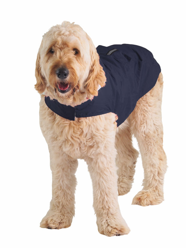 Large adjustable breathable dog rainjacket and raincoat