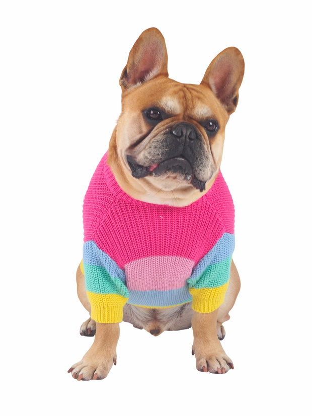 Pastel Rainbow Dog Sweater