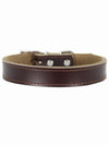 brown leather dog collar affordable