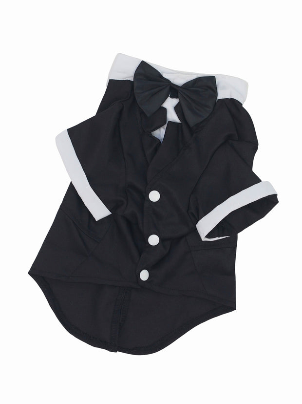 Smart tuxedo dog wedding black tie costume