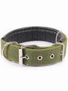 Green Cheap Nylon Dog Collar