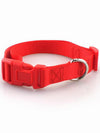 cheap red nylon dog collar