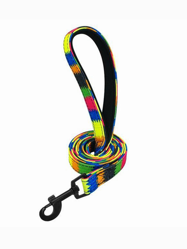 colour wheel nylon dog lead