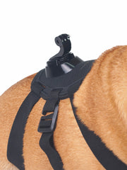 Dog harness with GoPro attachment for dog video