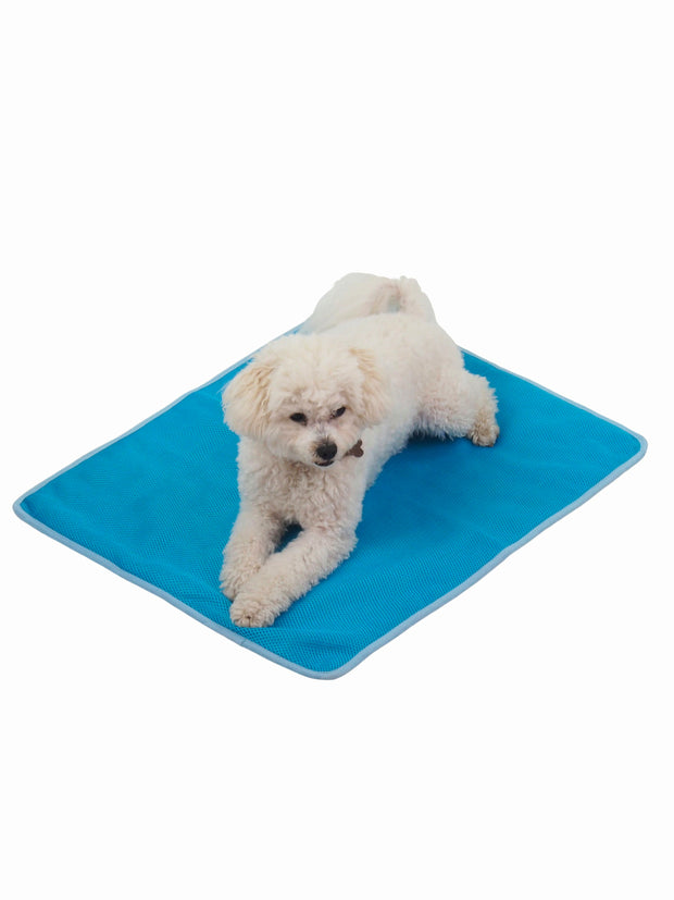 Summer cooling effect dog bed