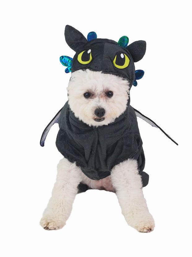 How to train your dragon dog costume