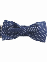 Fashionable dog bow tie