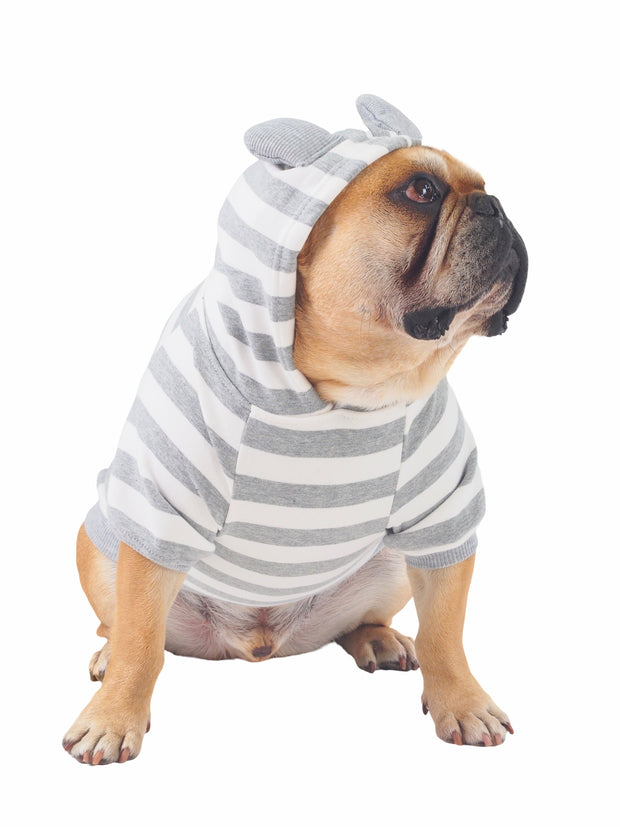 High quality striped dog jumper with hood and ears