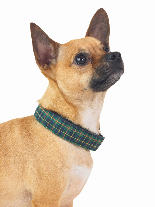 Dark Green Plaid Dog Collar
