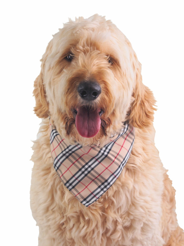Pink and grey plaid dog bandana